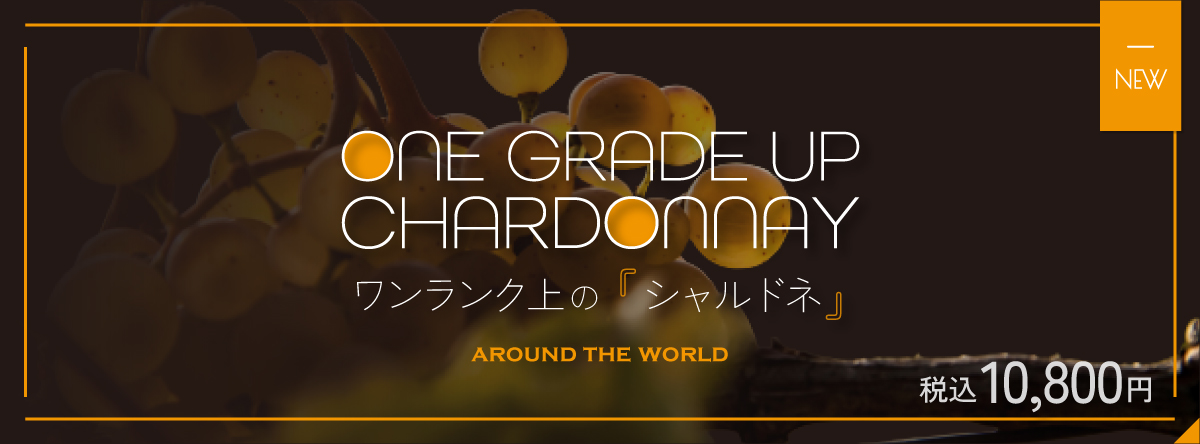 *ワイン専門店のソムリエがおすすめするワイン*This is サイコーにちょうどいい Honna Sale!