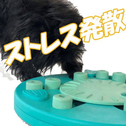 犬のおもちゃ知育玩具ニーナオットソン3