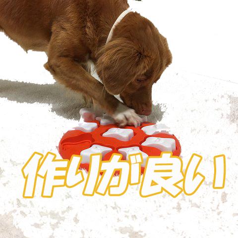 DOG Hide and Slide COMPOSITE NEW COLOR