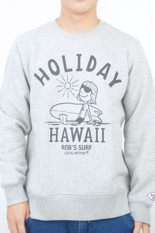 HOLIDAY HAWAII