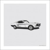 [42 x 42 cm] Shelby Ford GT500